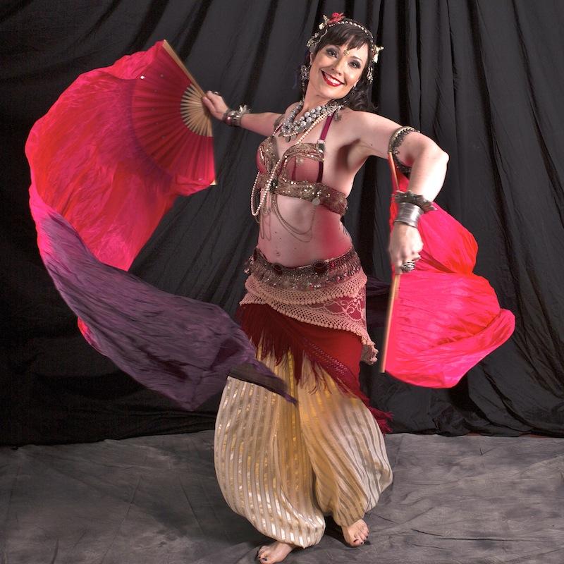 Belly Dance Costume,Belly Dance Fan Veils,including 2fans